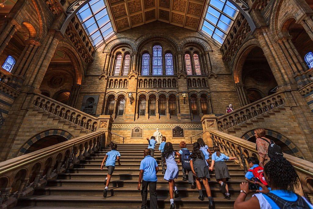 Musée d'histoire naturelle - Le British Museum
