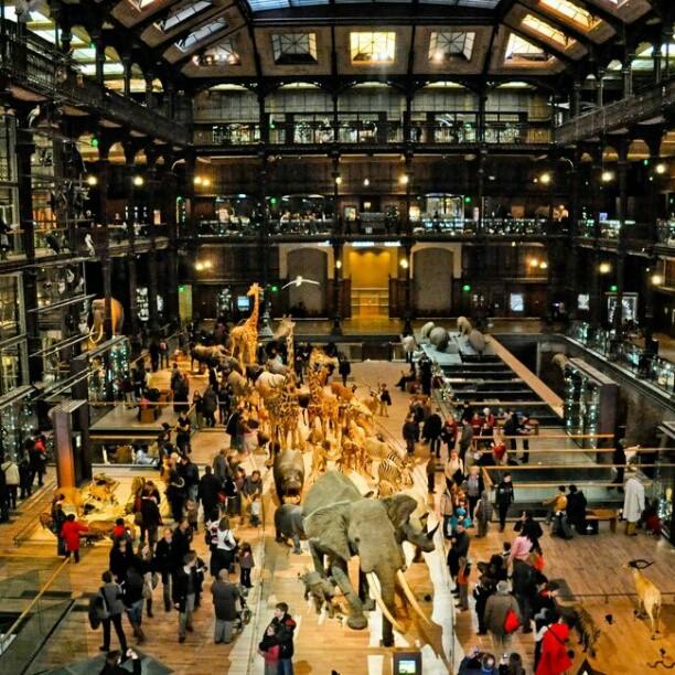 Le Musée National d'Histoires Naturelles