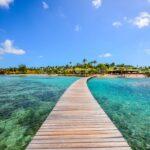 Que faire lors de ses vacances en Martinique ?