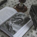 Yggdrasil : Le rendez vous à ne pas manquez pour les fans d'Harry Potter