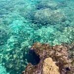 Pourquoi visiter les plages de Majorque en Espagne ?