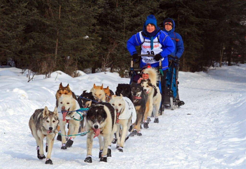 Cindy Gallea - Course de chiens de traîneau Iditarod Trail