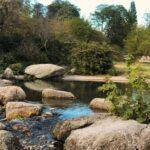 Quels sont les plus beaux parcs de Lyon ?