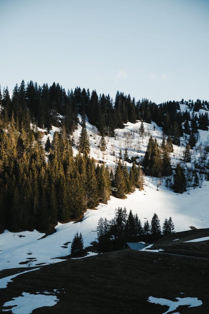 Alpes - Neige
