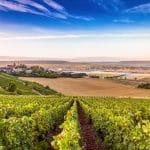 La région de Champagne et ses châteaux