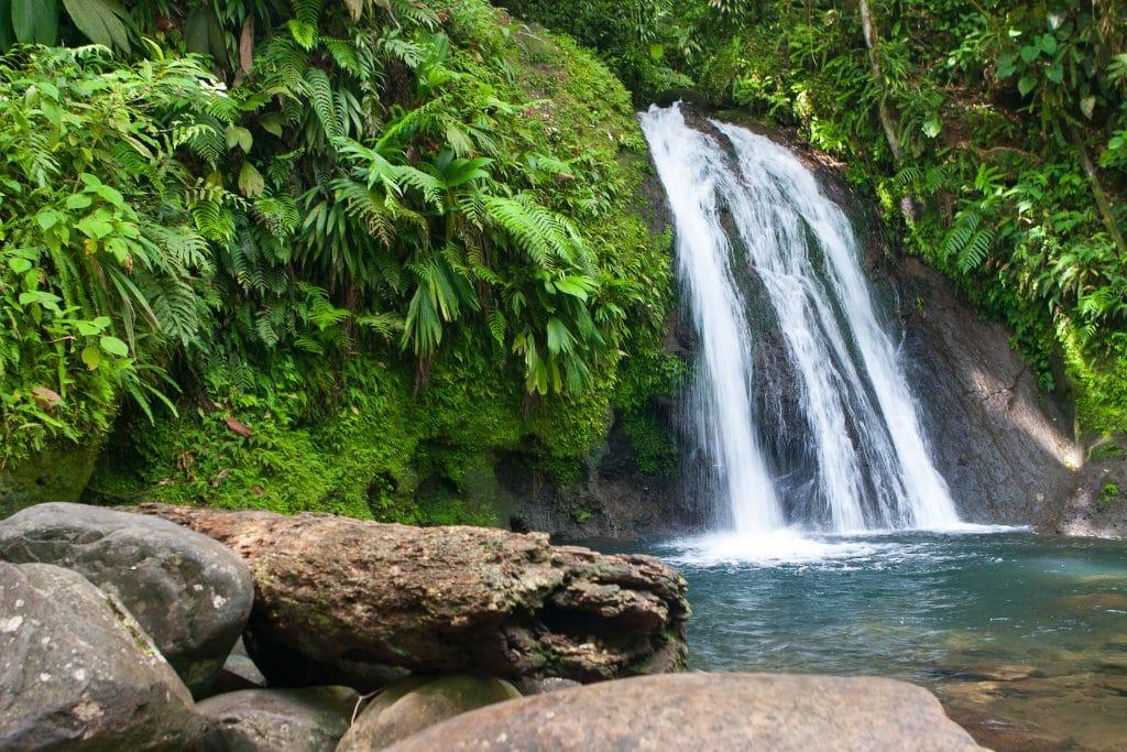 Pourquoi visiter la Guadeloupe ?