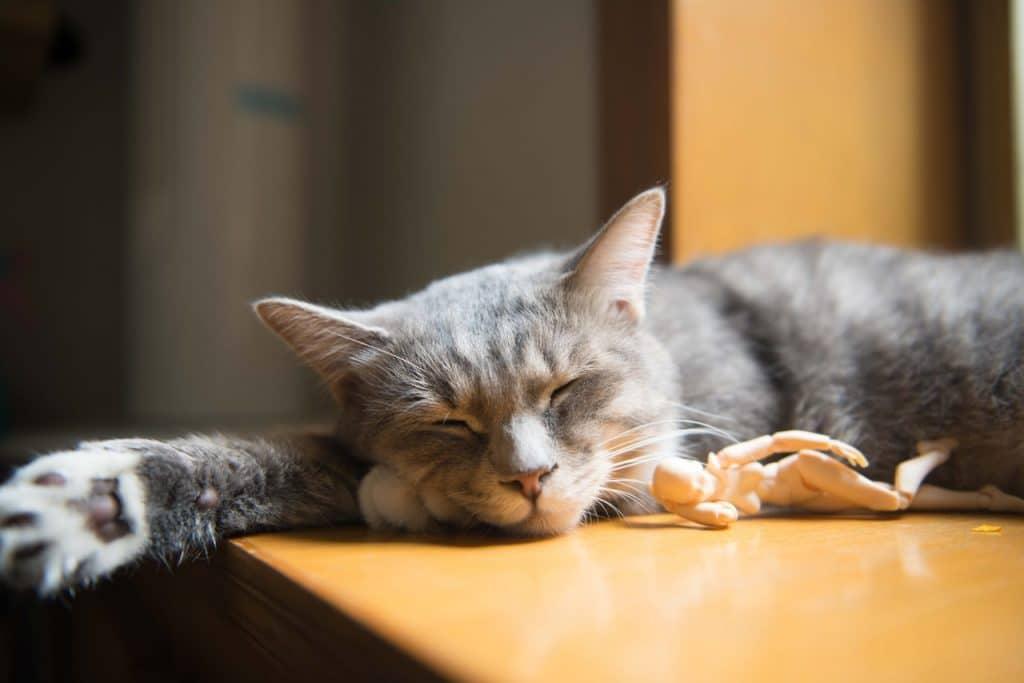 Détente apaisante - Dormir